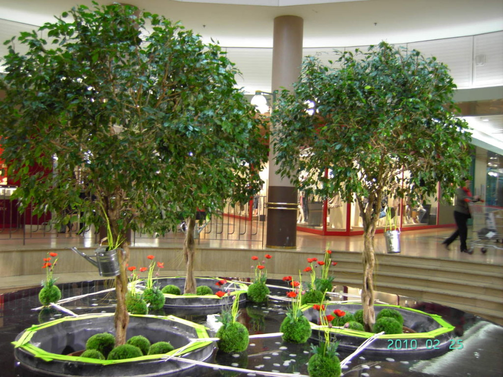 Location de plantes c 39 d co paysagiste for Amenagement espace vert