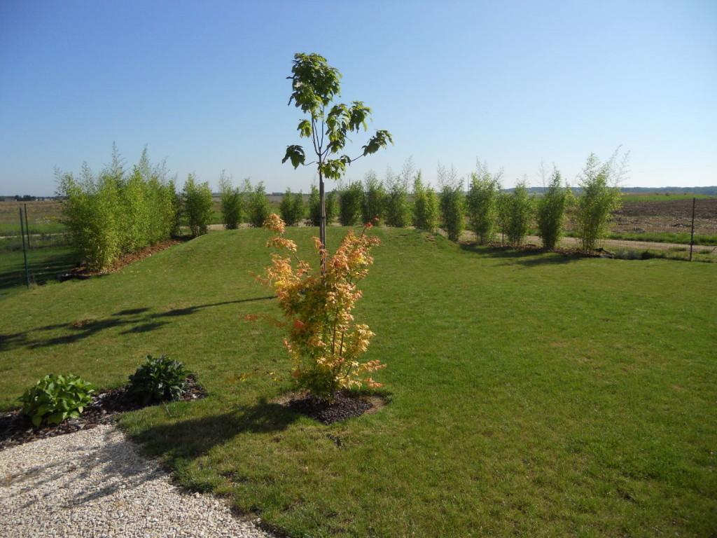 Plantation et gazons en Côte d'Or. Création d'espaces verts - C'DECO paysagiste Dijon