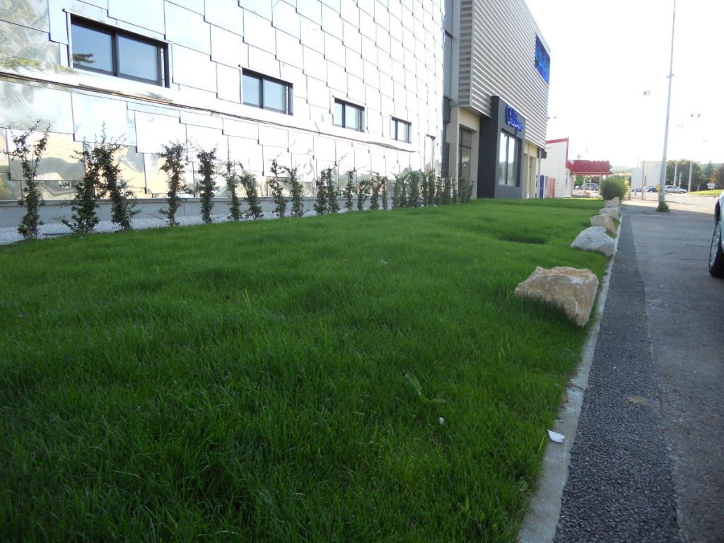 Plantation et gazons en Côte d'Or. Entretien d'espaces verts - C'DECO paysagiste Dijon